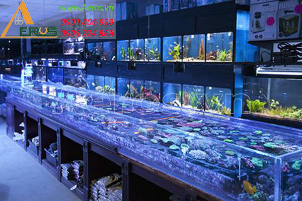 Top 10 mẫu thiết kế cửa hàng cá cảnh nhỏ đẹp nhất 2019