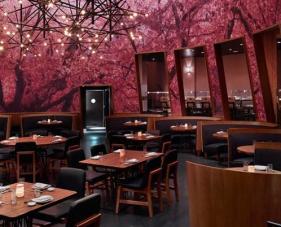 Những mẫu thiết kế nhà hàng ăn uống thu hút nhất hiện nay
