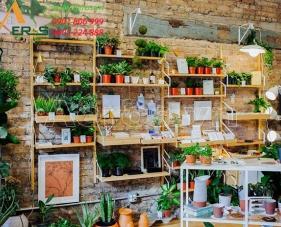 Top 10 mẫu thiết kế cửa hàng bán cây cảnh đẹp nhất