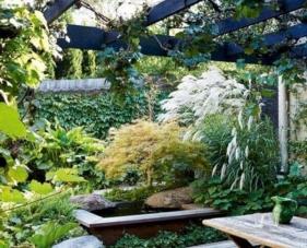 Tổng hợp những ý tưởng thiết kế sân vườn nhà phố đẹp đốn tim bạn đọc